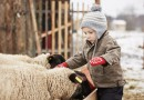 Urlaub auf dem Bauernhof – Spaß für die ganze Familie